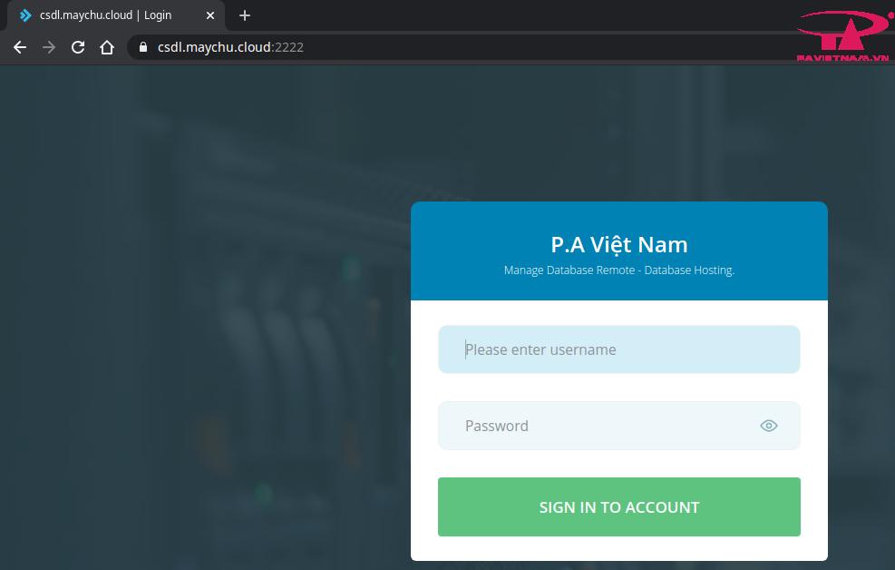 control panel database hosting